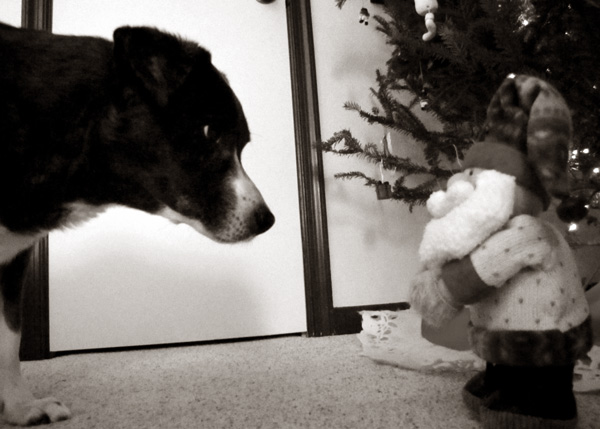 Naughty list? Dad's gloves? You heard about that?