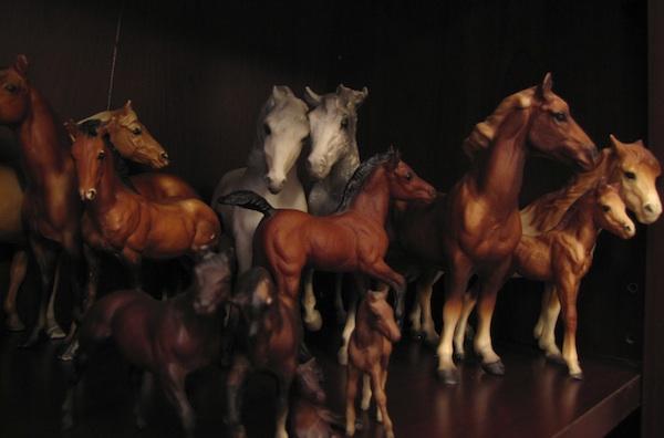 Horses Jan 8