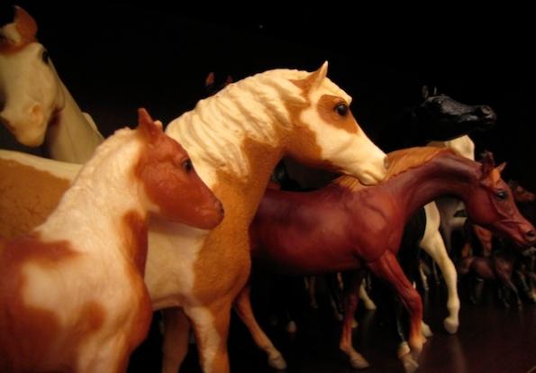 Horses Jan 8 8s