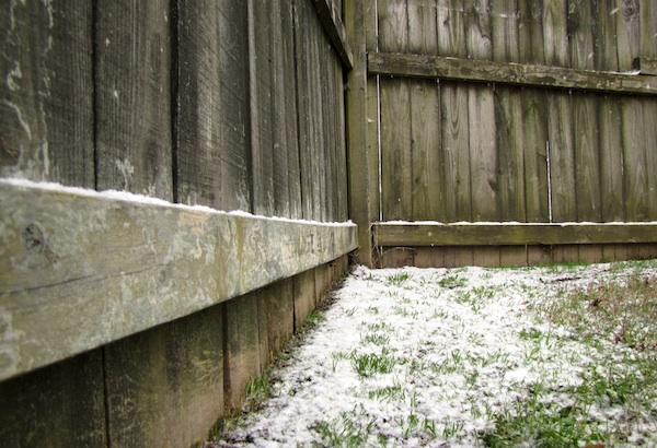 Snow Jan 24