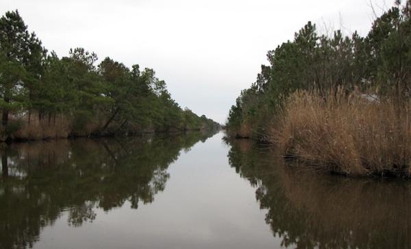 View Jan 1