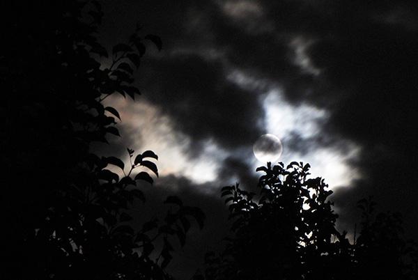 Blue Moon August 20