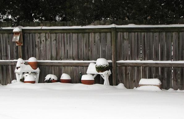 Snow Jan 29