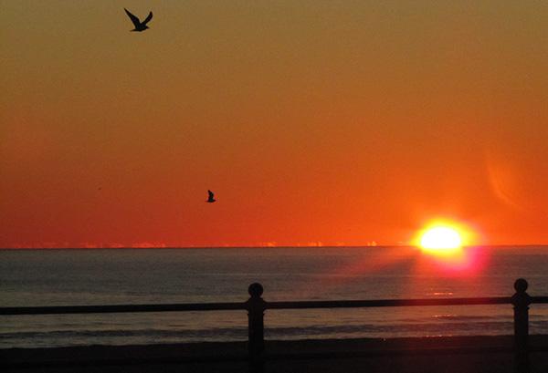 Sunrise Jan 11