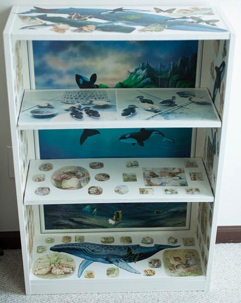 Shelf 1 July 5